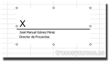 Hoja Excel con firma insertada