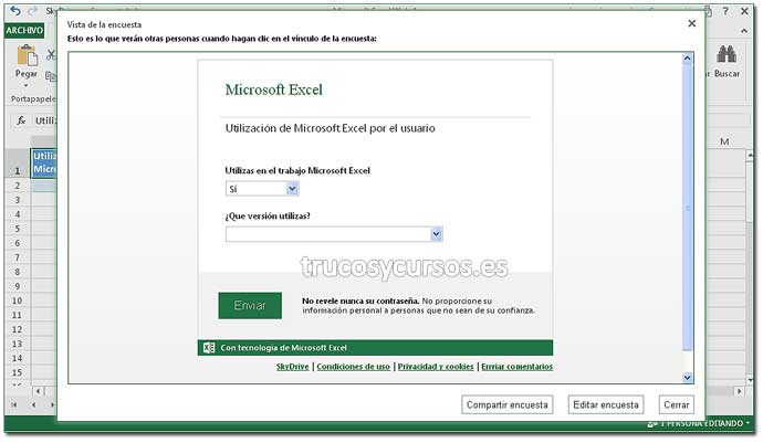 Encuesta en Excel Web App: Paso 12. Crear encuesta en Excel.