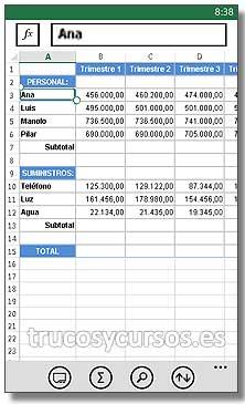 Microsoft Excel Mobile: Entorno de Microsoft Excel Mobile