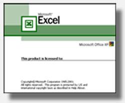 Cuadro de diálogo: Acerca de Microsoft Excel XP versión 10.0.