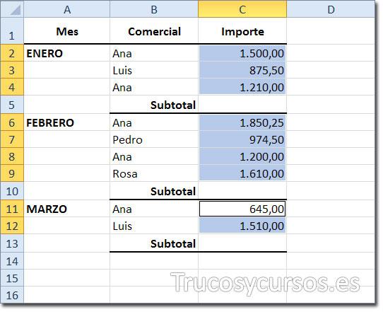 Hoja de Excel con rangos seleccionados para obtener el semitotal