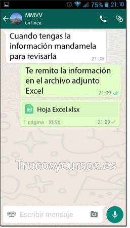 Ventana Whatsapp con archivo adjunto Excel enviado
