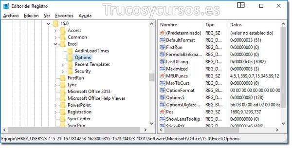 Valores predeterminados en Excel: Editor de registro con subnivel Excel / Options