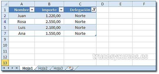 Obtener datos de un filtro Excel: Hoja1 con datos filtrados por delegación Norte