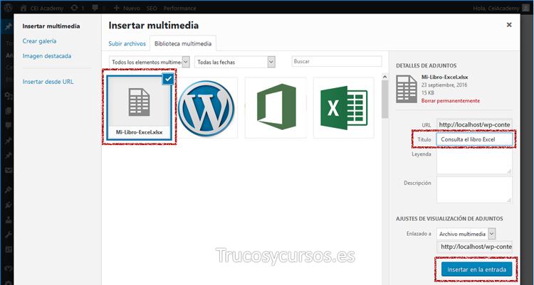 Ventana insertar multimedia con archivo Excel seleccionado
