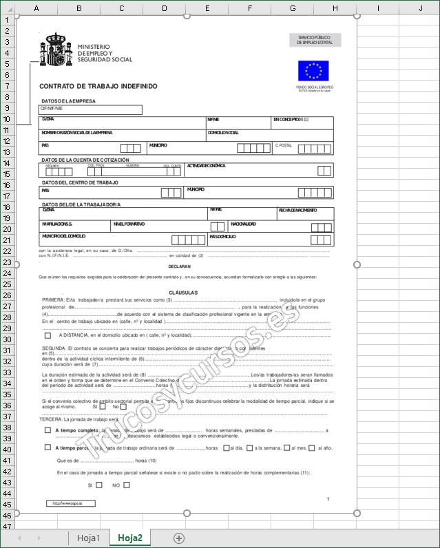 Rellenar documentos y formularios en Excel: Documento insertado