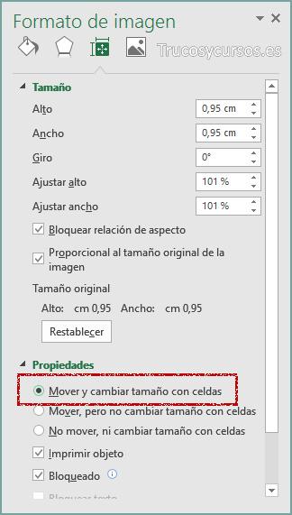 Panel de formato de imagen con opción mover y cambiar tamaño con celdas Excel
