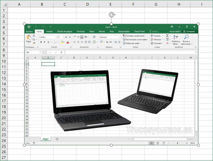 Imagen insertada en hoja Excel