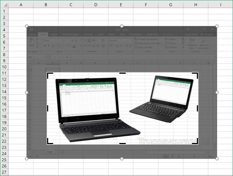Imagen Excel recortada