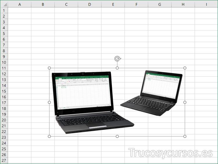 Imagen en Excel con el fondo eliminado