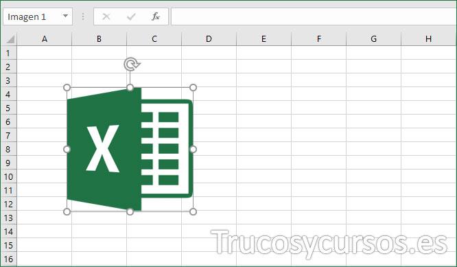 Hoja Excel con imagen insertada