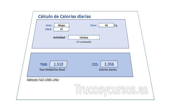 Cálculo de Calorías diarias en Excel
