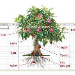 Plantilla: Ficha técnica de bonsais en Excel