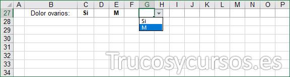 Hoja Excel, fila para indicar el dolor de ovarios
