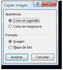 Cuadro de diálogo: copiar imagen con opciones de apariencia como pantalla y formato imagen.