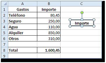 Hoja Excel con celda B1 pegada como una imagen (no se puede modificar)