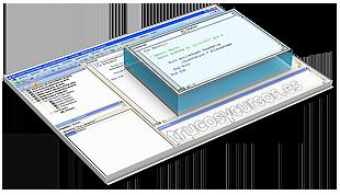 Los módulos VBA Excel